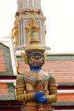 tajski olbrzym, Fotografia Stock