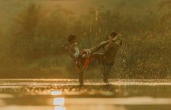 tajski pewien Fotografia Stock