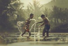 tajski pewien Obrazy Royalty Free