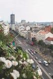 Tak av Belgrade, Serbien fotografering för bildbyråer