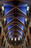 Tak av den Notre Dame domkyrkabasilicaen, Ottawa fotografering för bildbyråer