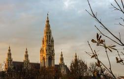 Tak av den `-Rathaus `en i Wien Royaltyfri Foto