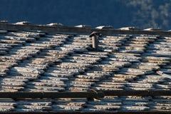 Tak av den traditionella chalet i europeiska fjällängar som göras av stenar Arkivbilder