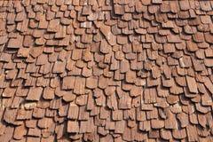 tak av wood bakgrund Royaltyfri Foto