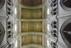 tak el francisco stora san Royaltyfri Foto