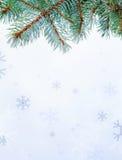 Tak en sneeuwvlokken stock afbeelding