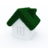 tak för grönt hus för gräs Fotografering för Bildbyråer