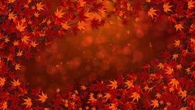 Tak met rode bladeren in het vallen Het traditionele landschap van het de herfstblad van mooie Japanse elegantiestijl Lijnanimati vector illustratie