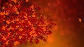Tak met rode bladeren in het vallen Het traditionele landschap van het de herfstblad van mooie Japanse elegantiestijl Lijnanimati stock illustratie