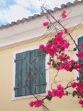 Tak met roze bloemenvector Stock Fotografie