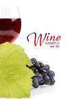 Tak van druiven en glas wijn Stock Afbeeldingen