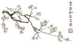 Tak van het tot bloei komen sakura Japanse kersenboom stock illustratie