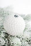 Tak van Kerstboom Stock Fotografie