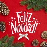 Tak van Kerstboom Stock Afbeeldingen