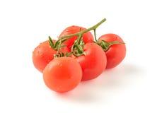 Tak van rijpe tomaten Royalty-vrije Stock Foto's