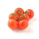 Tak van rijpe tomaten Royalty-vrije Stock Foto