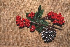 Tak van rode lijsterbes en snow-covered denneappel op een backg Royalty-vrije Stock Foto