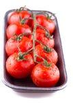Tak van rode tomaten Stock Afbeelding
