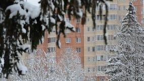 Tak van sparren in sneeuw tegen huis in Moskou, Rusland stock videobeelden
