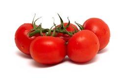 Tak van tomaat die over witte achtergrond wordt geïsoleerde royalty-vrije stock foto