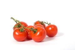 Tak van tomaten op wit stock afbeeldingen