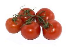 Tak van vijf rode tomaten Stock Afbeeldingen