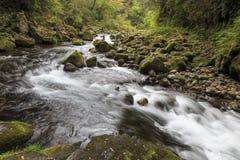 Takachiho gorge in Kyushu stock photos
