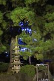 Takahadafudo Stock Afbeelding
