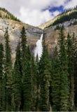 Takakkaw baja cascada en Yoho National Park Fotografía de archivo libre de regalías