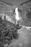 Takakkaw falls in British Columbia. Canada Royalty Free Stock Images