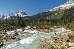 Takakkaw Falls Yoho National Park, British Columbia, Canada Stock Photos
