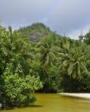 Takamaka d'Anse Mahe, Seychelles Photographie stock