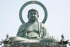 Takaoka Daibutsu, grande Buda, Japão Imagens de Stock