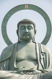 Takaoka Daibutsu, grande Buda, Japão Fotografia de Stock