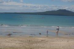 Takapuna plaża Zdjęcie Royalty Free