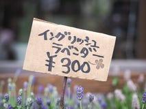 Takayama, Япония - 18-ое апреля 2018: unidentitied цветок и цена Японии ярлык стоковое фото rf