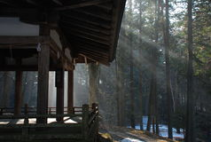 Takayama, Japan. Zen temple japanese architecture. Zen temple minimalism in Takayama, Japan. Sun rays and forest in Winter stock photo