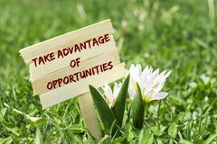 Take advantage of opportunities. On wooden sign in garden with white spring flower royalty free stock photography