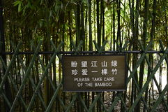 Take Care of the Bamboo Royalty Free Stock Photography