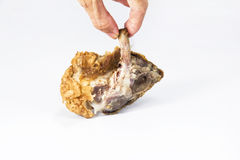 Take the chicken bone Royalty Free Stock Photography