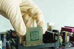 Take CPU from main board by hand. Take microprocessor from main board by hand Stock Photo