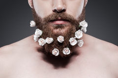 Take good care of your beard! Stock Images