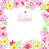 Take me to islands square frame. Design template with flowers. Royalty Free Stock Photos