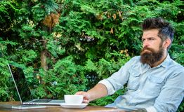 Take moment to think. Man bearded hipster make pause for drink coffee and think while sit with laptop. Break to relax. Guy drinks coffee relaxing terrace green stock image