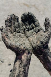 Take a mud cure. healthy medical procedure. dirty hands Stock Photography