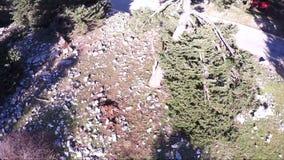 Take off Drone (POV) stock footage