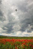 Take-off. View from a poppies field, near Cluj Napoca Airport, with an aeroplane taking off Royalty Free Stock Photo