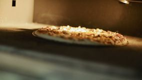 Pizza Baking In The Oven stock footage