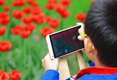 Take a photo Royalty Free Stock Photo