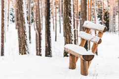 Take a rest. Soo cold! Royalty Free Stock Photography